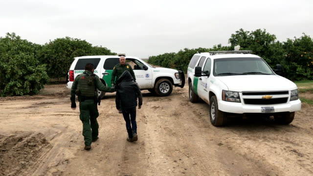border patrol agents detain an undocumented immigrant from central america after capturing his group in a grapefruit orchard on february 22, 2018... - mcallen texas stock videos & royalty-free footage