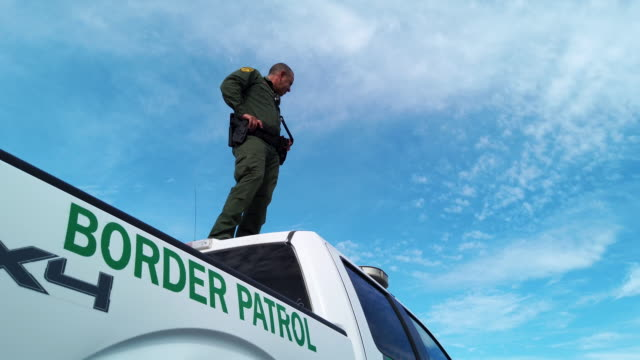 border patrol agents search for undocumented immigrants in a cotton field near the u.s.-mexico border on september 10, 2019 in penitas, texas. border... - mcallen texas stock videos & royalty-free footage