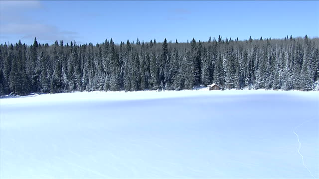 a boreal forest surrounds a log cabin at the edge of a frozen lake. available in hd. - 寒帯林点の映像素材/bロール