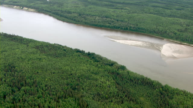 Boreal forests line the banks of the Athabasca River.