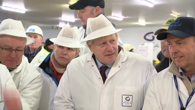 boris johnson at a fish market in grimsby - cool box stock videos & royalty-free footage