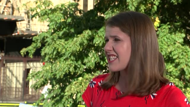 liberal democrats leader jo swinson determined to stop brexit england london westminster ext jo swinson mp interview sot - british liberal democratic party stock videos and b-roll footage
