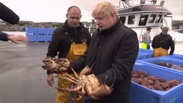 boris johnson pm holding crabs after visiting crab fishing boat in orkney during his visit to scotland - recreational pursuit stock videos & royalty-free footage