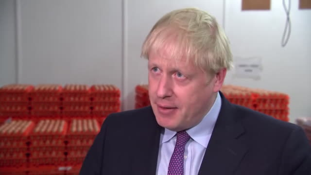 boris johnson saying the government will support welsh businesses who may struggle postbrexit - struggle stock videos & royalty-free footage