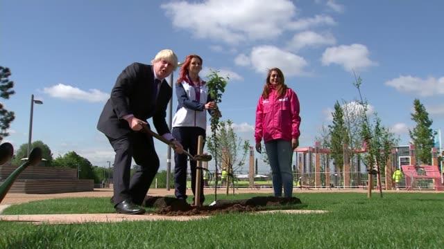 boris johnson sworn into parliament as mp for uxbridge; london: ext various of boris johnson planting a tree johnson watering tree - planting stock videos & royalty-free footage