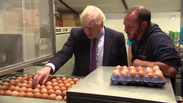 boris johnson viewing and picking eggs on a farm during his first visit to wales as prime minister - carton stock videos & royalty-free footage