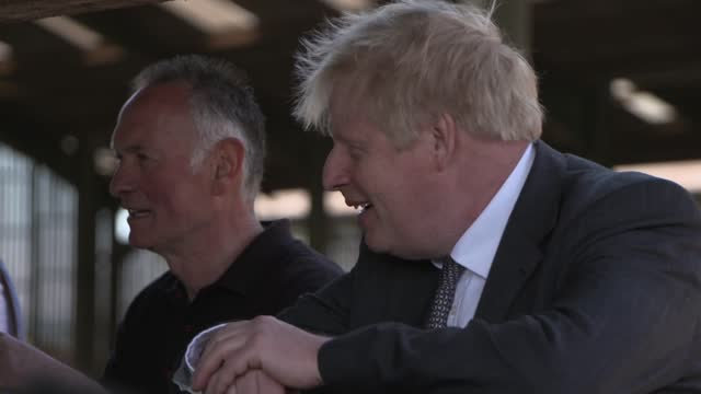 boris johnson visits farm in wales; wales: clwyd south: ext boris johnson mp chatting with farm workers in yard by barns / johnson taking photo of... - leaning stock videos & royalty-free footage