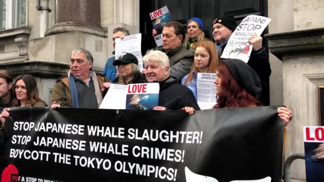 boris johnson's father and reported partner were among protesters at an event opposing japan's plans to resume commercial whaling. stanley johnson... - whaling stock videos & royalty-free footage