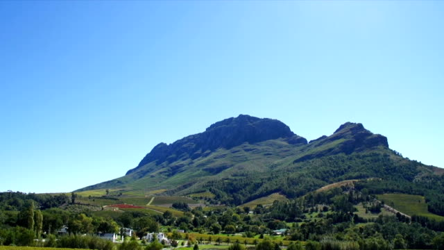 ws zo boschendal wine estate and vineyards/ franschhoek/ western cape/ south africa - franschhoek stock videos and b-roll footage
