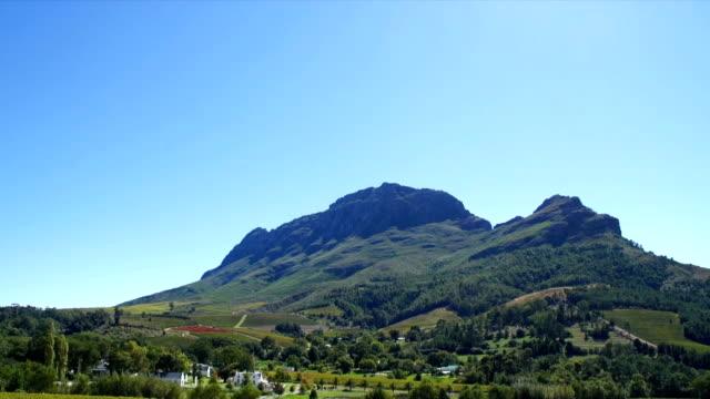vídeos y material grabado en eventos de stock de ws zo boschendal wine estate and vineyards/ franschhoek/ western cape/ south africa - cabo winelands