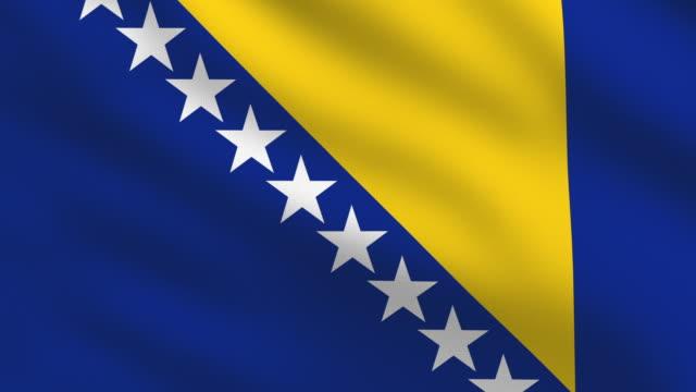 bosnia and herzegovina flag - 波斯尼亞 赫塞哥維納 個影片檔及 b 捲影像