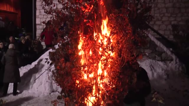 Bosnian Orthodox bellievers burn Christmas oak tree branches symbolizes the firewood brought by shephers to the cave and built a fire to warm the...