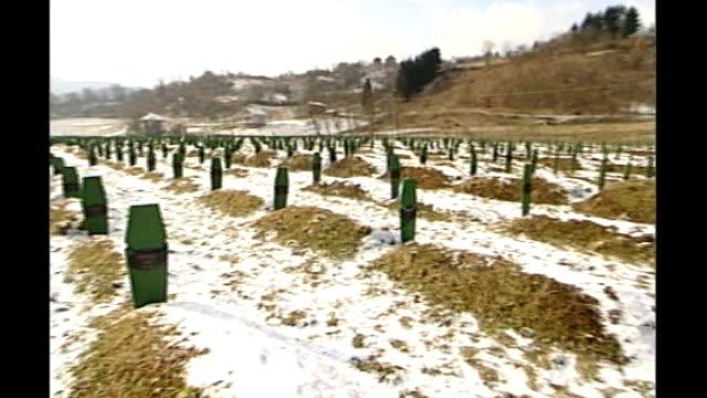 bosnian serb wartime general ratko mladic arrested; bosnia & herzegovina: srebrenica: ext / snow on ground general view of mass grave site man... - ratko mladic stock videos & royalty-free footage