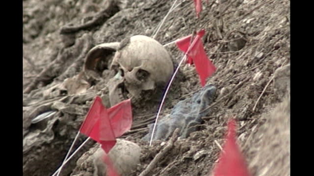 Bosnian Serb wartime general Ratko Mladic arrested T10079618 Near Srebrenica Skulls and red flags on earth Partly uncovered grave site on hillside as...