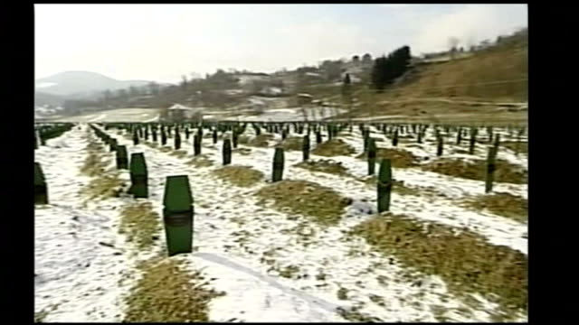 bosnian serb wartime general ratko mladic arrested tx general view of mass grave site - srebrenica stock videos and b-roll footage
