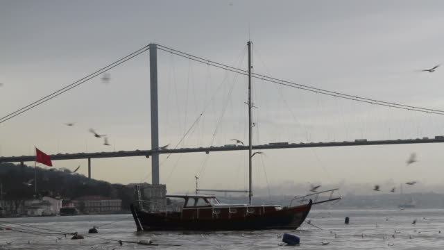 bosphorus bridge and boat - july 15 martyrs' bridge stock videos & royalty-free footage