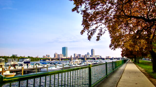 stockvideo's en b-roll-footage met boston bay - waterkant