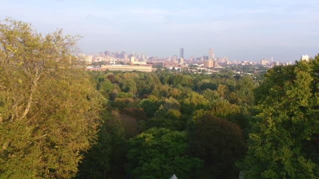 boston skyline, wide shot over trees - 青々とした点の映像素材/bロール