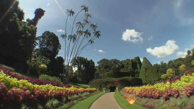 WS Botanical garden, Kandy, Sri Lanka