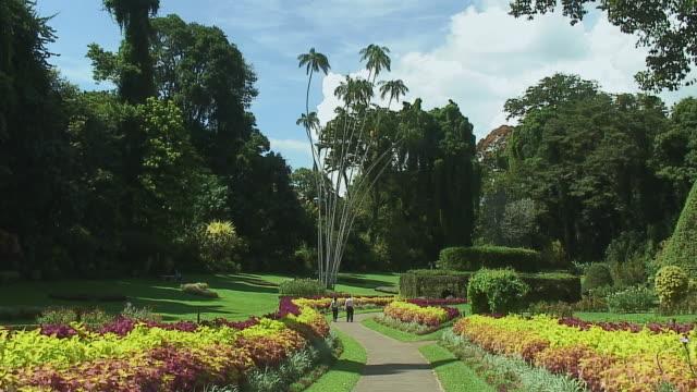 vídeos y material grabado en eventos de stock de ws botanical garden, people on path in distance, kandy, sri lanka - parterre