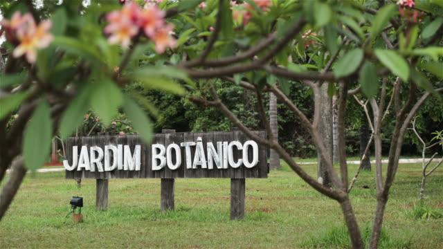 LS Botanical gardens / Jardim Botanico / Brasilia, Brazil