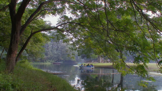ws botanical gardens lake / calcutta, west, bengal india - botanical garden stock videos & royalty-free footage