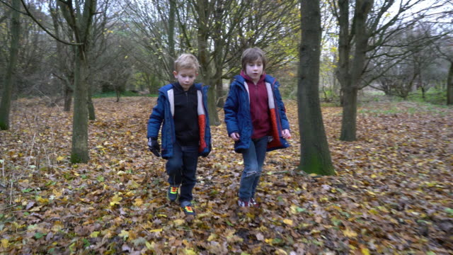 Bothers walking through woodland