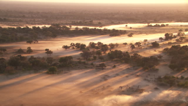 vídeos de stock, filmes e b-roll de botswana, africa : savannah in the mist at sunrise - áfrica