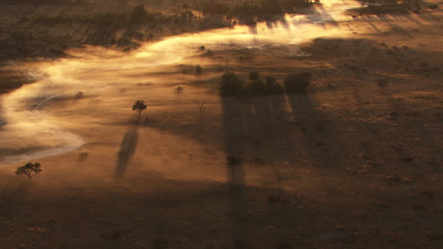 vídeos de stock e filmes b-roll de botswana, africa : savannah in the mist at sunrise - savana