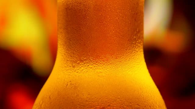 flasche des bären - bierflasche stock-videos und b-roll-filmmaterial