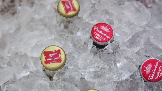 bottles of anheuserbusch inbev nv budweiser brand beer are displayed for a photograph in a cooler alongside sabmiller miller brand beer in tiskilwa... - anheuser busch inbev stock videos and b-roll footage