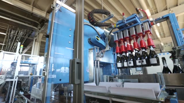 bottles of italian prosecco wine move along a conveyor belt at cantina sociale cooperative agricola di vittorio veneto winery in conegliano italy on... - viniculture stock videos & royalty-free footage