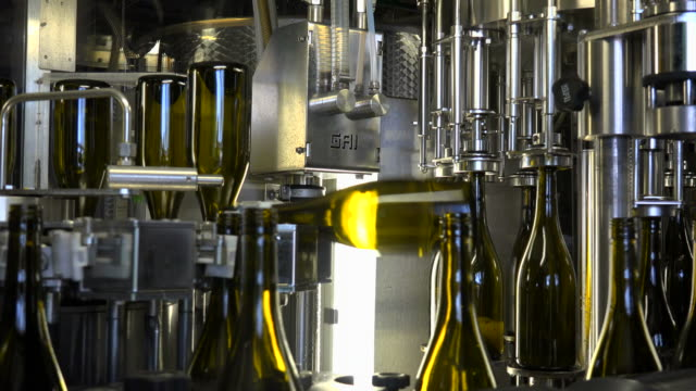 bottling of wine in vinery - viniculture stock videos & royalty-free footage