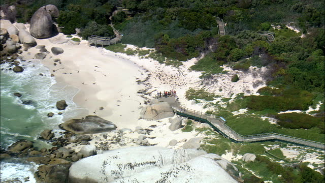 boulders beach  - aerial view -,  south africa - boulder beach western cape province stock videos and b-roll footage