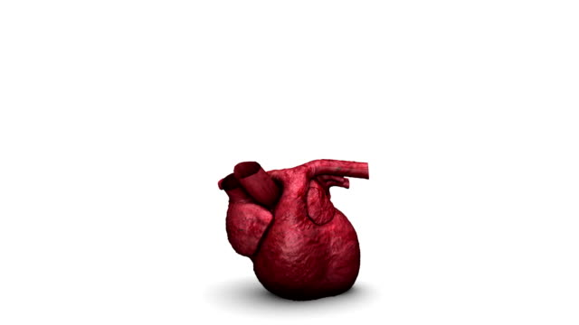 Bouncing Heart