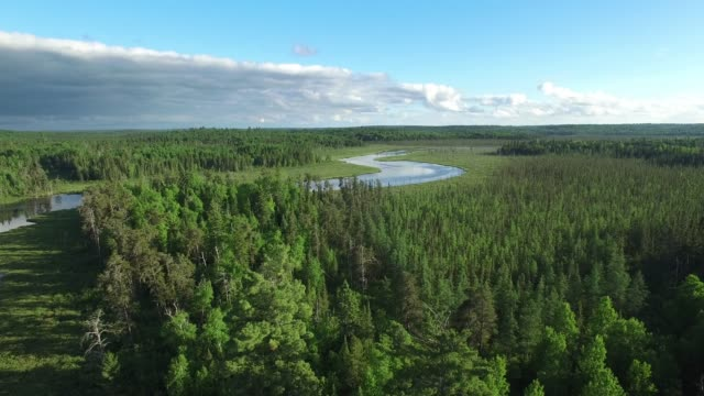 Boundary Waters Edge Minnesota - Summer Aerial