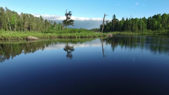 boundary waters edge minnesota - summer aerial - minnesota stock videos & royalty-free footage