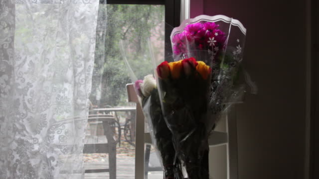 a bouquet of flowers in a window. - bouquet stock videos and b-roll footage