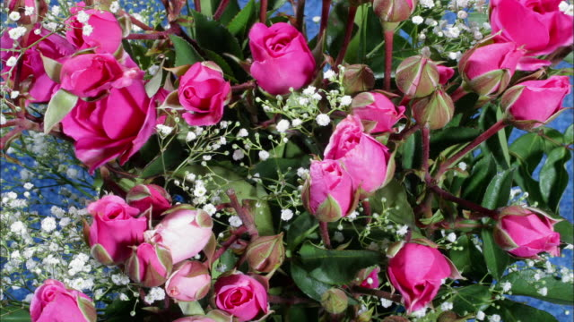 A bouquet of pink roses blooms.