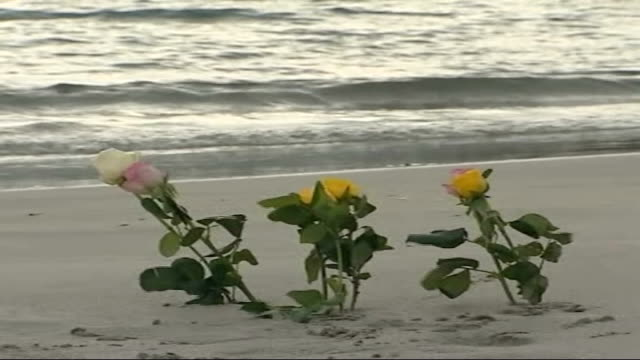 vidéos et rushes de memorial service held mourners away leaving service flowers lying on beach - cétacé