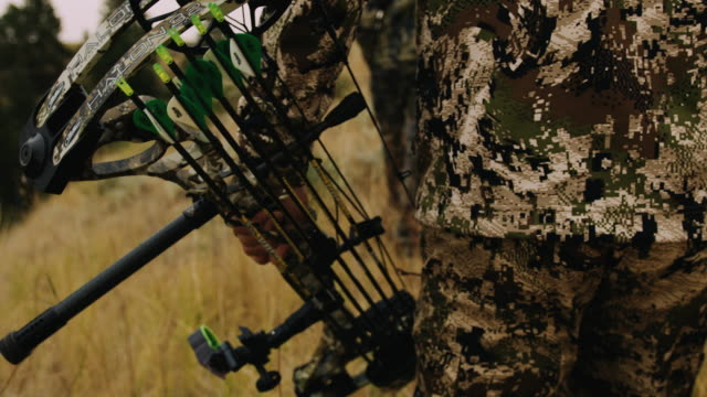 a bow hunter walks through grass carrying his compound bow, the shallow depth of field and slow motion give the shot a feeling of intensity as he walks in full camouflage. - wildlife tracking tag stock videos and b-roll footage