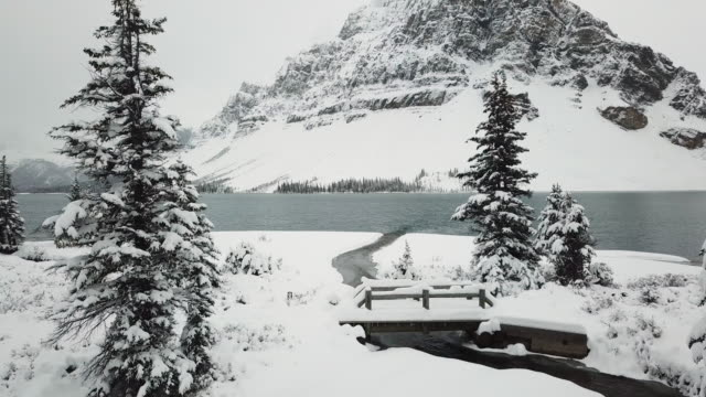 bow lake in snow - rocky mountains north america stock videos & royalty-free footage