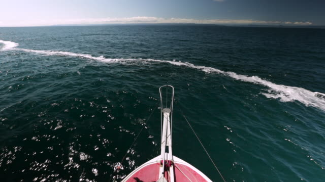 """pov bow of boat on atlantic ocean, canada - """"bbc natural history"""" stock videos & royalty-free footage"""