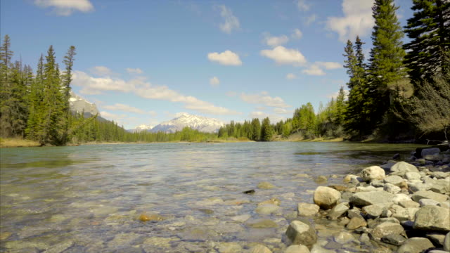 Bow River 4k