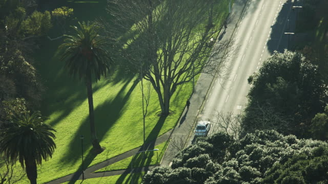 Bowen Avenue, Auckland From Above