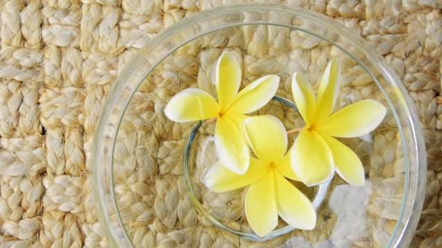 vídeos de stock e filmes b-roll de bowl filled with moving yellow frangipani flowers - natureza morta