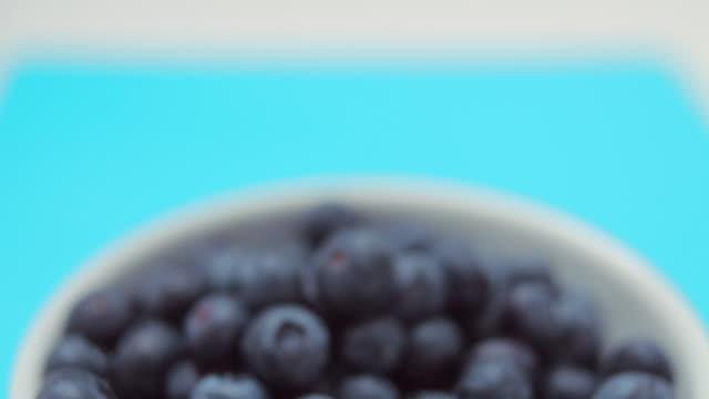 CU TD Bowl of blueberries / London, UK