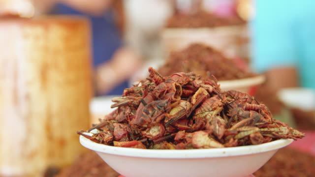 vídeos de stock e filmes b-roll de a bowl of fried grasshoppers for sale at a food store in oaxaca, mexico - modo de preparação de comida
