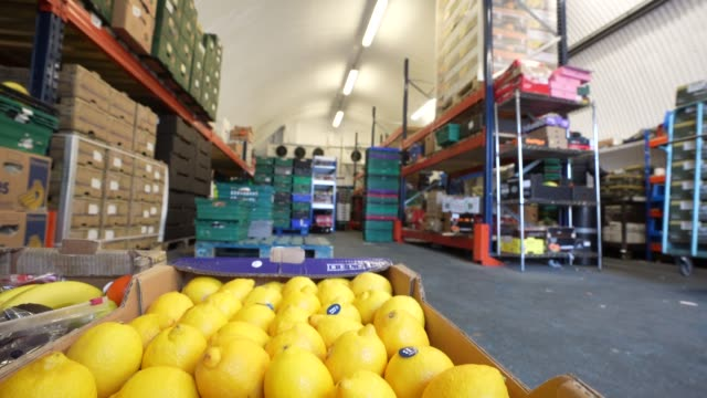 a box of fresh lemons at the smith brock warehouse on april 07 2020 in london united kingdom smith brock who are best known for supplying fresh food... - freshness stock videos & royalty-free footage