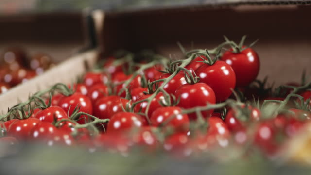 ds box of red cherry tomatoes ready for sale - local produce stock videos & royalty-free footage
